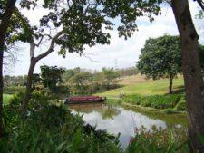 ProAm del Panamá CLARO en Marcha