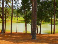 Paisaje Club de Golf de Panamá