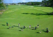 MCOGV Golf