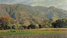 Hortalizas en San Bernardino (cortesía historiasdecaracas.files.wordpress.com)