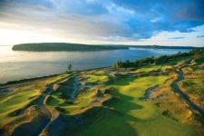 The Charlie Brown Tree Chambers Bay golf (cortesía www.washington golfguide.com)