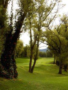 """""""Camaradería, espíritu deportivo y un bello campo de golf…"""""""