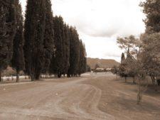 Militares y Civiles unidos por el golf