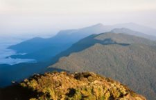 Fila Maestra Cordillera de la Costa (cortesía www.costadevenezuela.org)