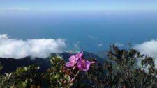 Pico Naiguatá (cortesía 2.bp.blogspot.com)