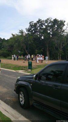 Reforestación Arboles Guayacanes y Jacarandas