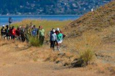 Rory McIlroy and Morgan Pressel walk down the 16th hole (cortesía USGA)