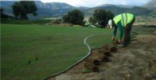 ¿Cómo seleccionar la mejor especie de grama para cada campo de golf? (cortesía www.novogreen.net)