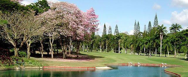 La Lagunita cuenta los días para el Sudamericano Juvenil de Golf por equipos