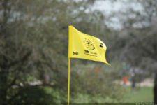Bandera WGC