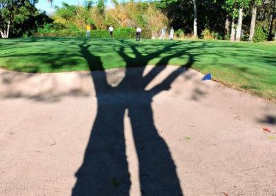 A la sombra del Ávila