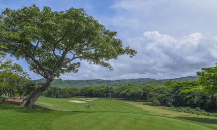 Con el Flor de Caña Open se reinicia el PGA TOUR Latinoamérica