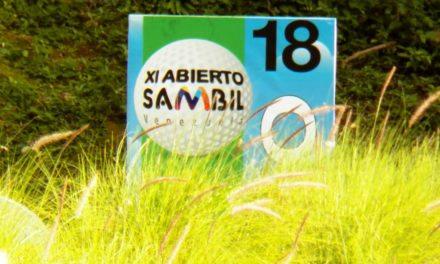 XI Abierto Sambil, ProAm Copa Provincial (cont)