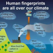 La Trompada al Calentamiento Global (cortesía Star Tribune)