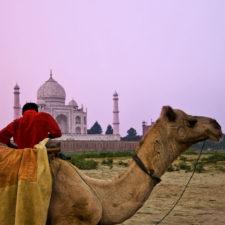 F - Agra (cortesía Trey Ratcliff)
