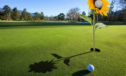 Asciende base de consumidores de golf en los Estados Unidos