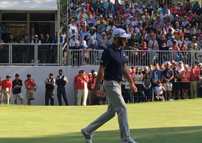 Dustin Johnson green