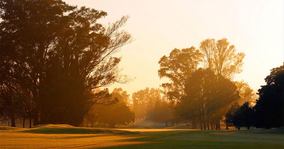 Turkish Airlines trae su 5ª Copa Mundial de Golf a Buenos Aires
