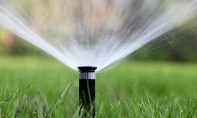 La ciudad de Texas gana premios por su exitoso programa de conservación de agua