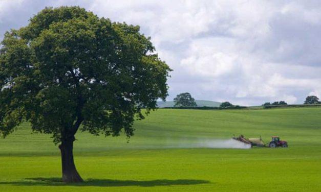 La UE prohíbe los pesticidas más utilizados en el Reino Unido por temor a la salud y al medio ambiente
